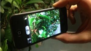 scattare foto con tasto volume iphone