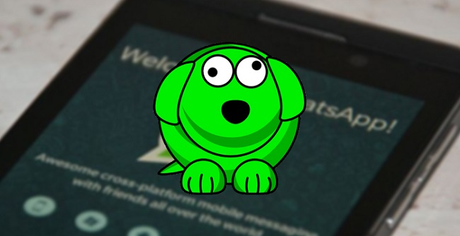 Spiare contatti WhatsApp tramite WhatsDog