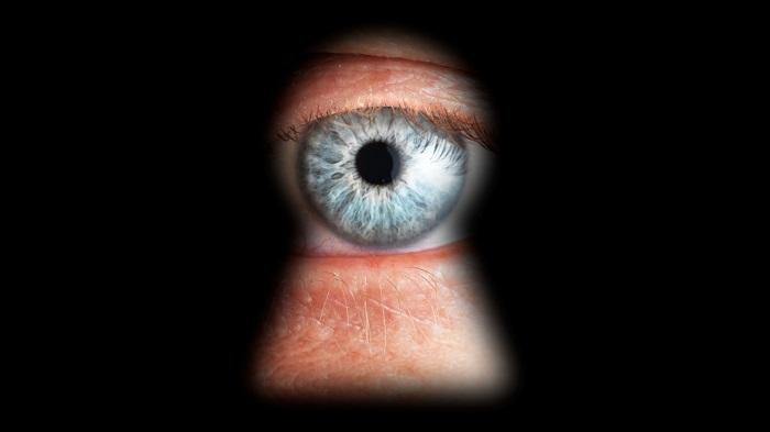 Spy Photographer: Spiare/Controllare PC