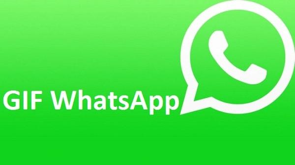 GIF WhatsApp: Condividerle su Android iOS